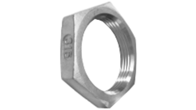 Stainless Steel Bsp Back Nut 316 P
