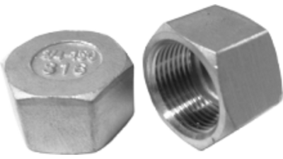 Stainless Steel Bsp Hex Cap 316